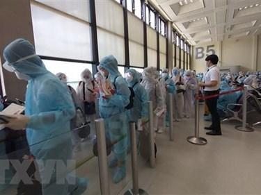 新冠肺炎疫情:将280名越南公民从俄罗斯和白俄罗斯接回国 hinh anh 1