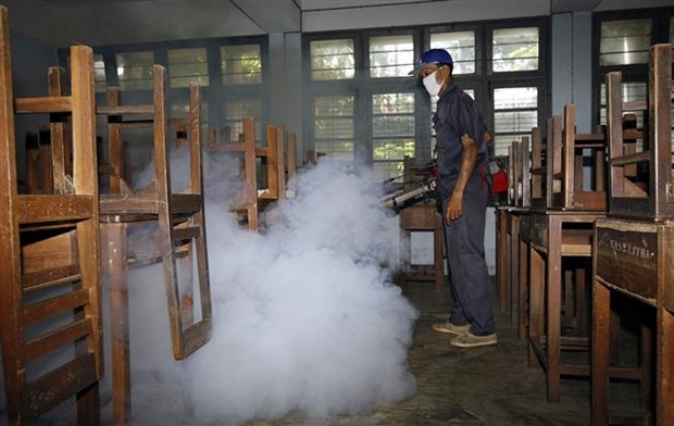 缅甸发出有关登革热病预防警告 hinh anh 1