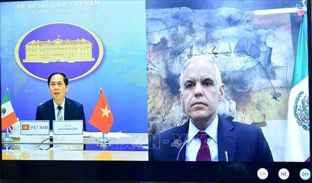越南与墨西哥两国外交部副部长举行线上会谈 hinh anh 1