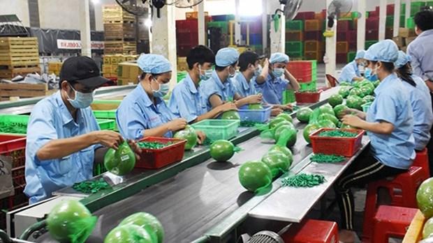 越南槟椥省为中小型企业对接资金 hinh anh 1