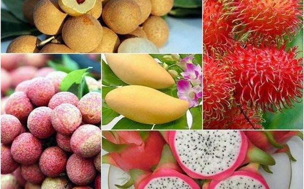 越南农产品出口连续迎来喜讯 hinh anh 1