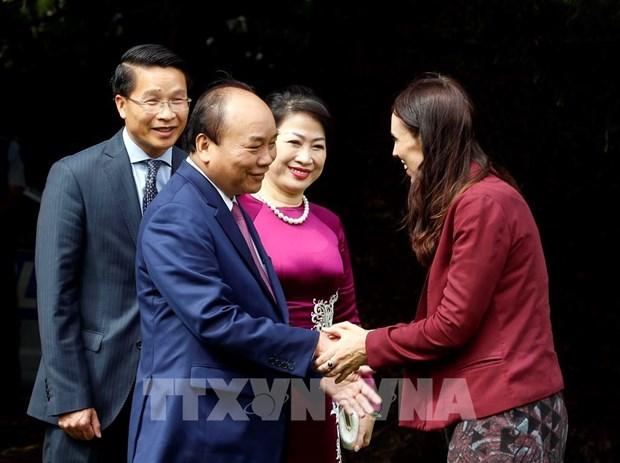 推动越南—新西兰两国关系迈上新台阶 hinh anh 1