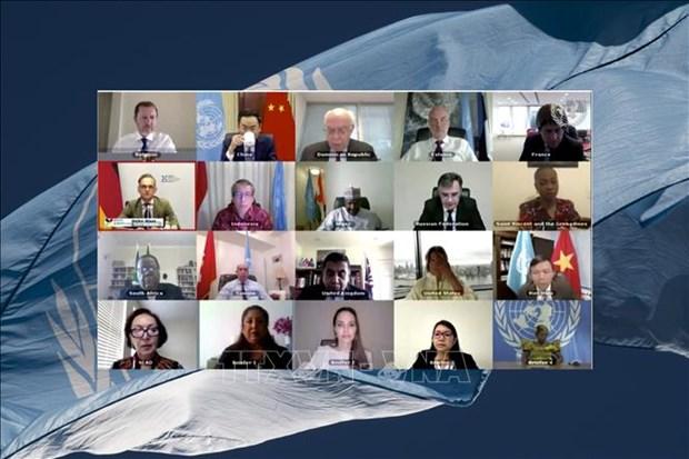 越南呼吁各方在国际法的基础上为塞浦路斯问题寻找全面性措施 hinh anh 1