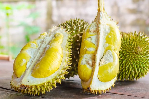 越南着力在澳大利亚市场促销榴莲 hinh anh 1