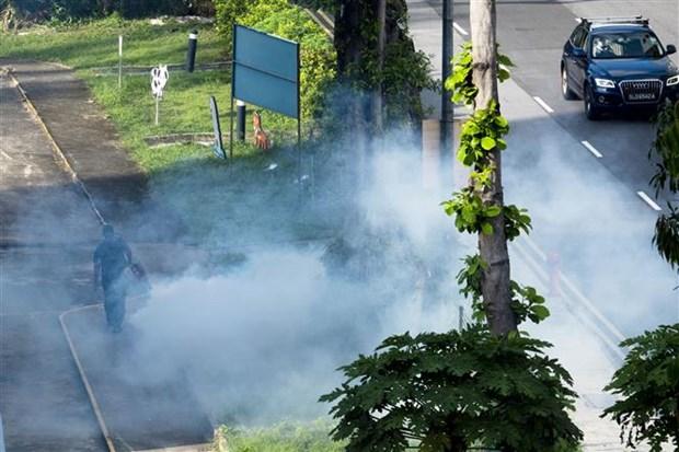 新加坡登革热疫情继续恶化 hinh anh 1