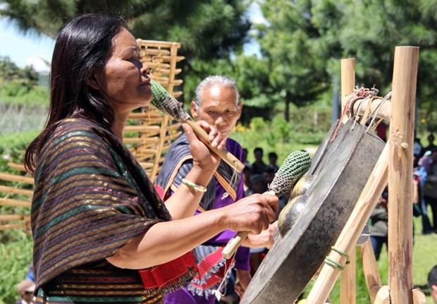 在森林里重生的朱儒族文化 hinh anh 1