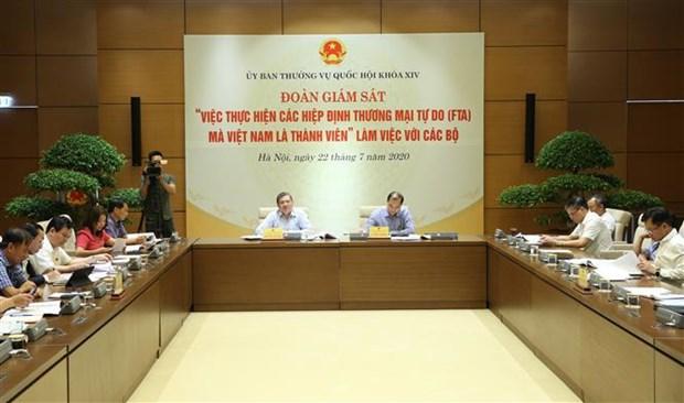 对越南作为成员的各项自贸协定实施情况进行监察 hinh anh 2