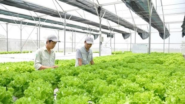 越南农业利用第四次工业革命成就实现发展 hinh anh 1