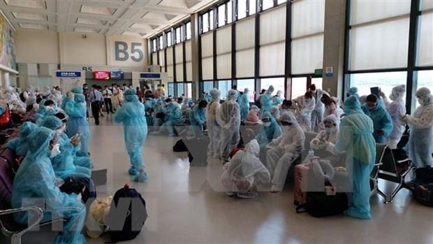 新冠肺炎疫情:将在新加坡的240多名越南公民接回国 hinh anh 1