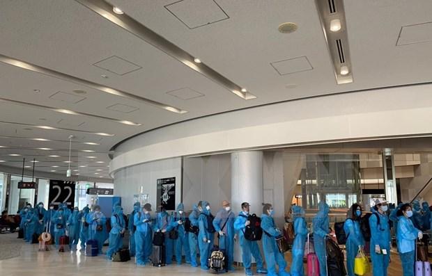 越南政府组织航班 将190名越南公民从日本接回国 hinh anh 1