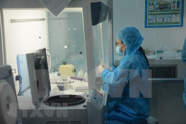 越南新增11例社区传播病例 hinh anh 1