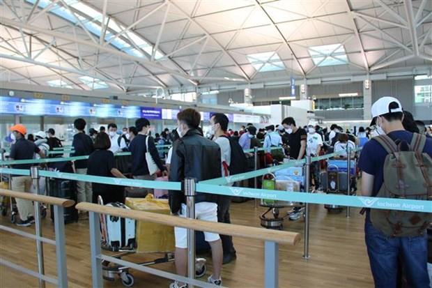 新冠肺炎疫情:将在韩国的310名越南公民接回国 hinh anh 1