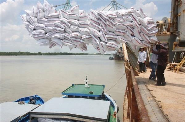 越南在大米出口方面或将超过泰国 hinh anh 1