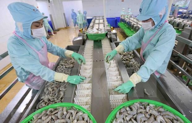 2020年前7月越南农林水产品出口额约达223亿美元 hinh anh 1
