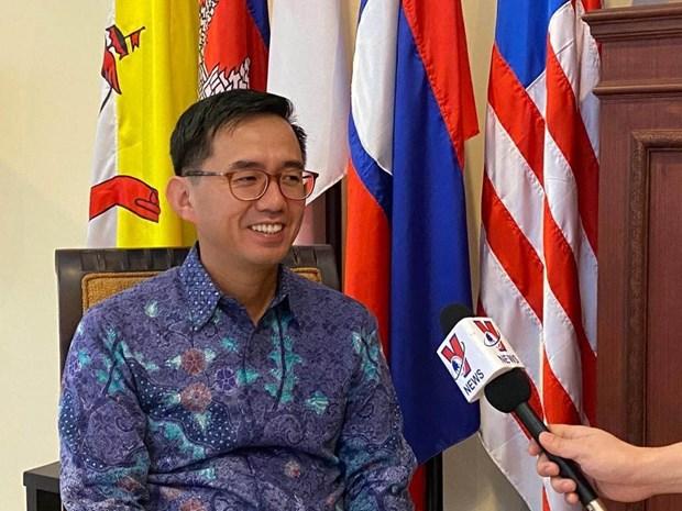越南驻印尼大使:越南是东盟积极、主动、负责任的一员 hinh anh 1