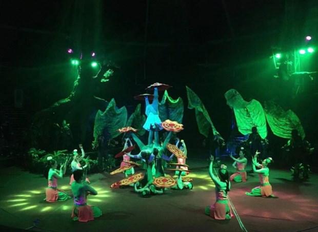 《湄公秀》——越南当代杂技与水木偶相结合的表演 hinh anh 1