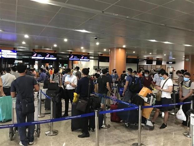 将240名公民从缅甸接回国 hinh anh 1