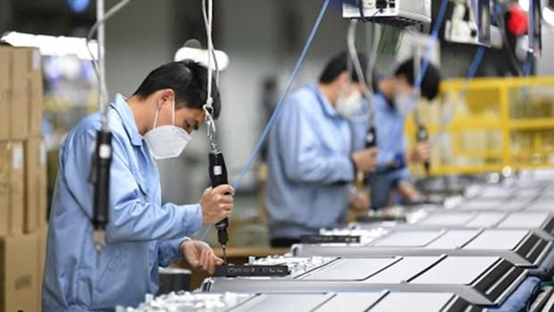 2020年前7月越南复工复产企业2.86万家 同比增长17.6% hinh anh 1