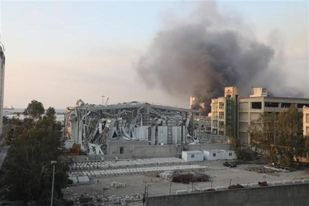 黎巴嫩贝鲁特港口大爆炸:越南驻埃及兼驻黎巴嫩大使努力做好公民领事保护工作 hinh anh 2