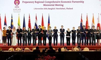 印尼驻越大使哈迪:在疫情爆发情况下越南努力确保东盟合作进程顺利展开 hinh anh 2