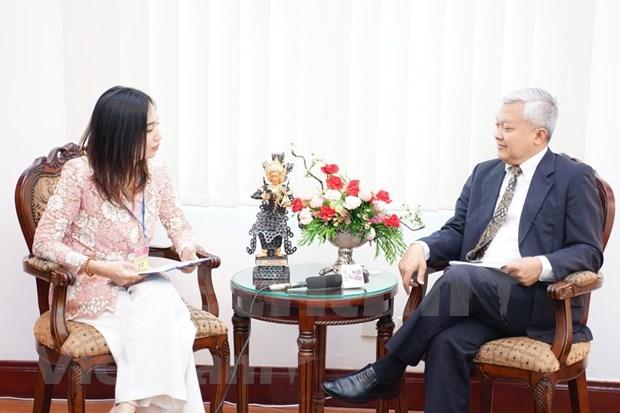 印尼驻越大使哈迪:在疫情爆发情况下越南努力确保东盟合作进程顺利展开 hinh anh 1