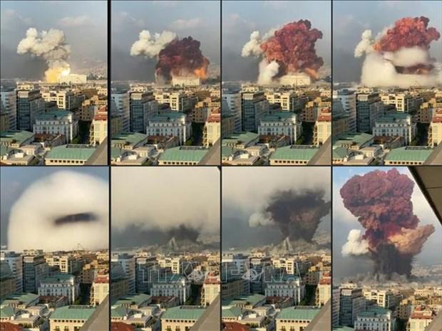 2020东盟轮值主席年:东盟外长就黎巴嫩爆炸发表了联合声明 hinh anh 1