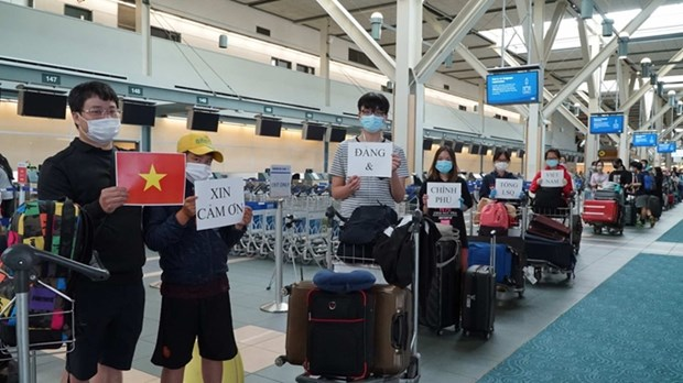 越南将在加拿大和韩国的300余名公民接回国 hinh anh 1