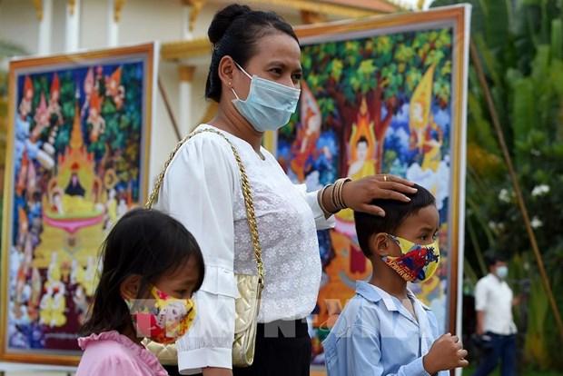 柬埔寨新增15例新冠肺炎确诊病例 hinh anh 1