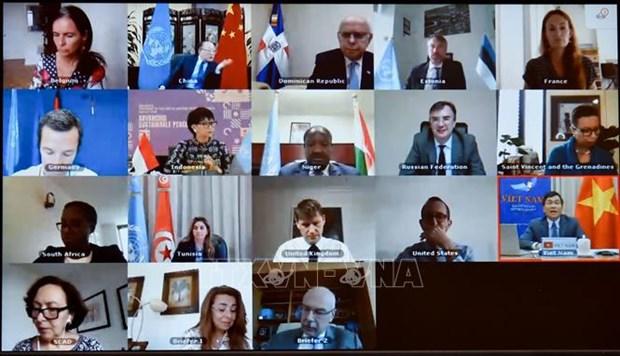 越南与联合国安理会:联合国安理会讨论几内亚比绍政治僵局 hinh anh 1