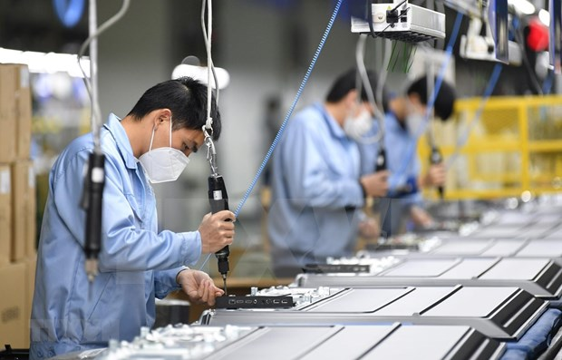 至2020年底胡志明市劳动力需求量约达105000人 hinh anh 1