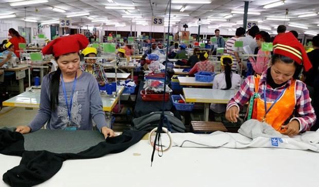 欧盟开始将部分撤销柬埔寨商品关税优惠 hinh anh 1