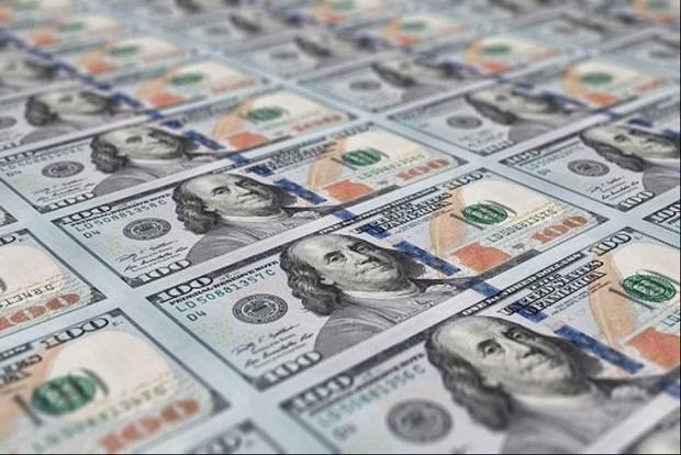 8月12日越盾对美元汇率中间价保持不变 hinh anh 1