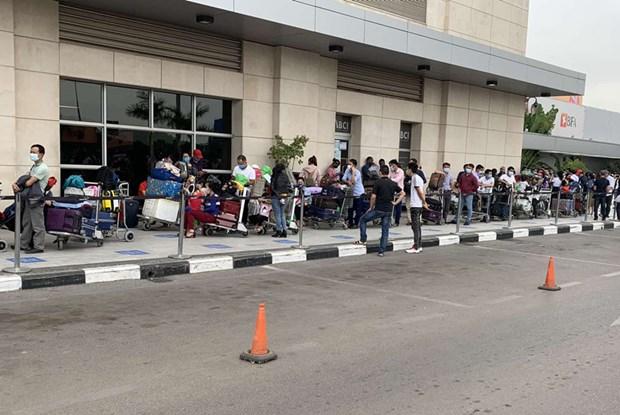 新冠肺炎疫情:将340名越南公民从安哥拉接回国 hinh anh 1