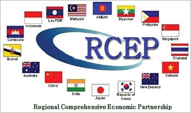 泰国拟在2020年内签署RCEP协定 hinh anh 1