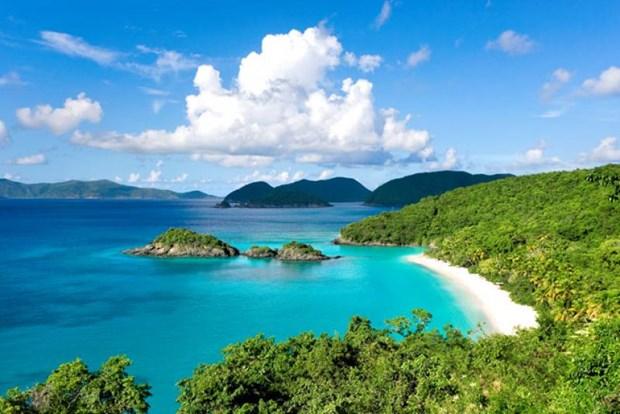 促进富国岛发展成为国际级优质旅游服务中心 hinh anh 2