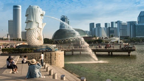 近60%新加坡企业预计业务需一两年才能恢复 hinh anh 1