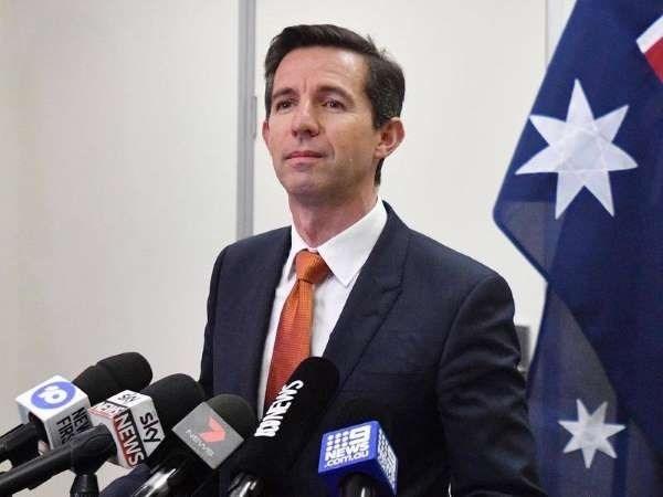 澳大利亚贸易部长对与东盟各国合作潜力给予高度评价 hinh anh 1