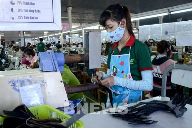 永福省各家企业招聘需求增加 hinh anh 1