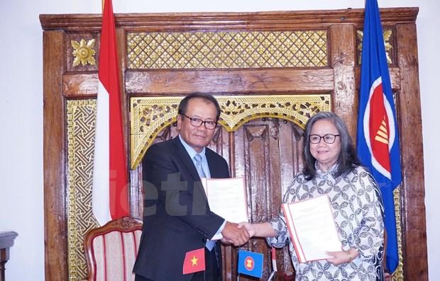 越南接任捷克东盟委员会轮值主席职位 hinh anh 1