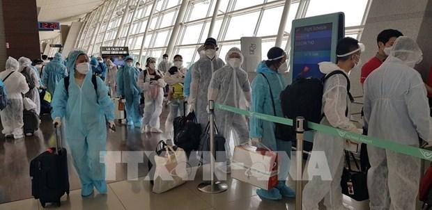在欧洲和非洲的近350名越南公民已安全回国 hinh anh 1