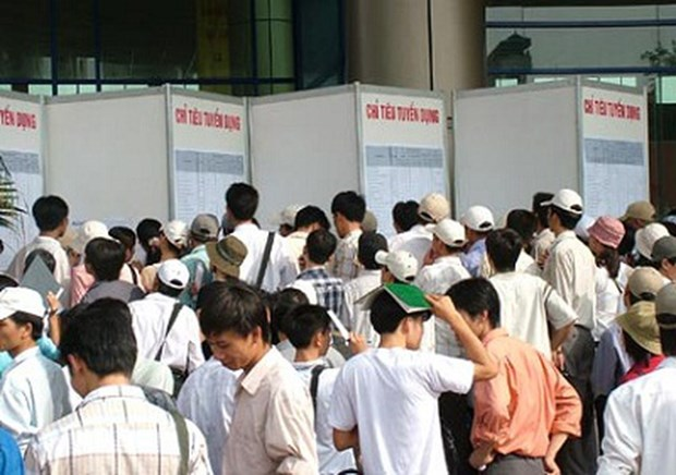 2020年第二季度 越南的失业率创10年来新高 hinh anh 1