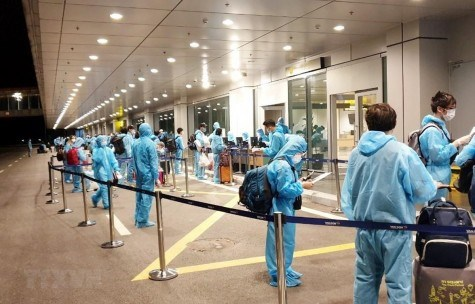 越南将232名越南公民从乌兹别克斯坦接回国 hinh anh 1