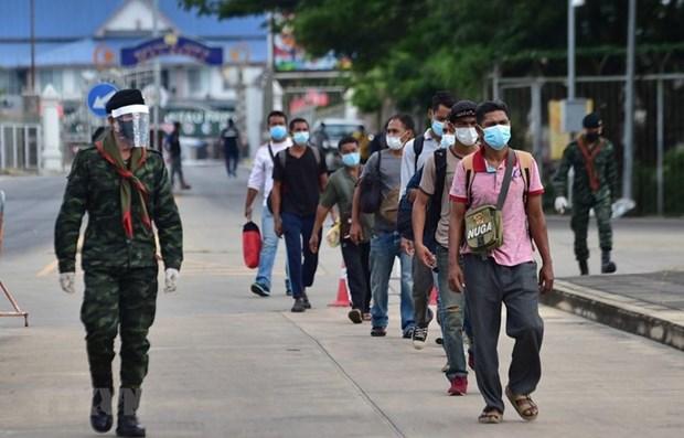 泰国相隔100天多后再出现新型肺炎本土个案 hinh anh 1