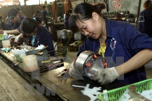 受新冠肺炎疫情影响 越南与老挝贸易目标难以实现 hinh anh 1