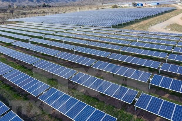 越南公司参加老挝太阳能发展项目 hinh anh 1