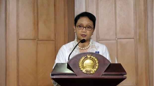 印尼推动有关维持东盟政治与经济稳定的承诺 hinh anh 1