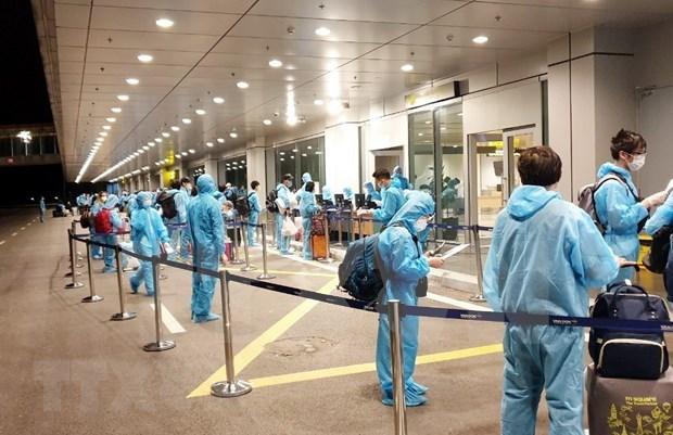 在澳大利亚和新西兰的近350名越南公民安全回国 hinh anh 1
