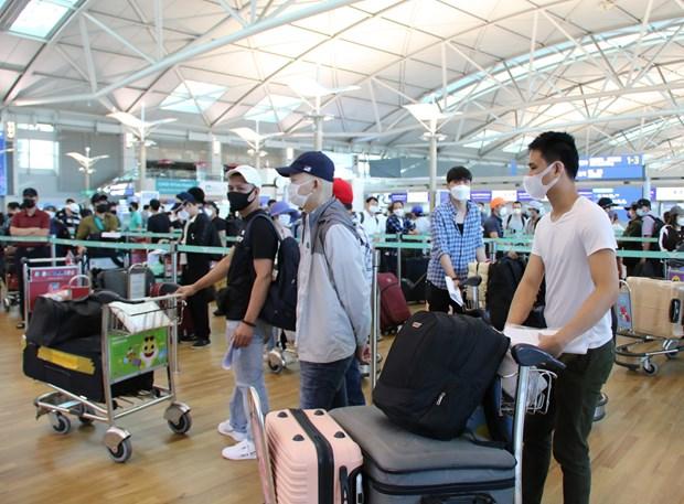 逾405名在韩国的越南公民安全抵达新山一国际机场 hinh anh 1