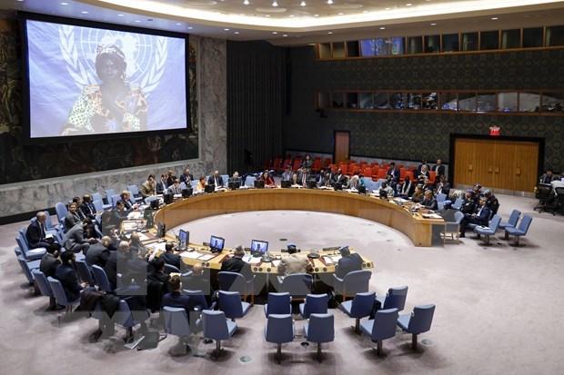 越南与联合国安理会:越南对法语国家国际组织所作出的贡献表示欢迎 hinh anh 1