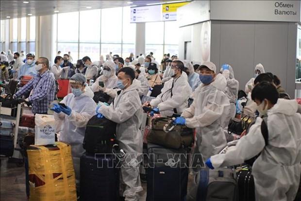 新冠肺炎疫情:将在俄罗斯的逾340名越南公民接回国 hinh anh 1